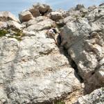 Escalade du passage rocheux, sommet de Chamechaude (Massif de la Chartreuse)