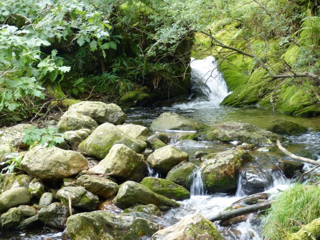 Cascade et Bassin Trek Glendalough - Blog Voyage Trace Ta Route