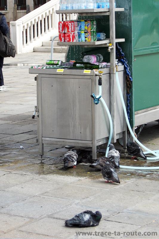 Douche pour pigeons sur la Riva degli Schiavoni, Venise