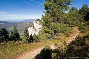 Sentier de randonnée au Mont Granier (Chartreuse)