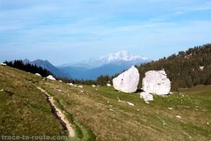 Les Rochers de l'Alpette avec le Mont Blanc (Mont Granier, Chartreuse)
