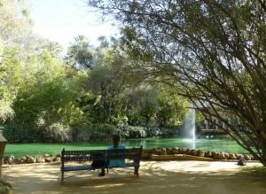 banc au jardin de maria luisa - Seville