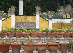 casa de pilatos de seville - Andalousie