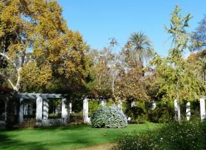 jardins de l alcazar - Seville