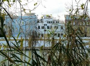 les berges du Guadalquivir