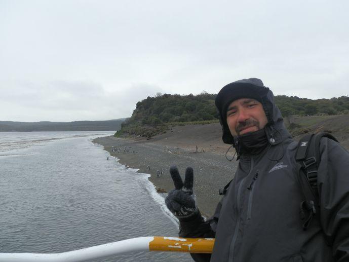 tristan manchots isla martillo ushuaia