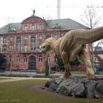 Senckenberg Museum, Musée d'Histoire Naturelle de Francfort