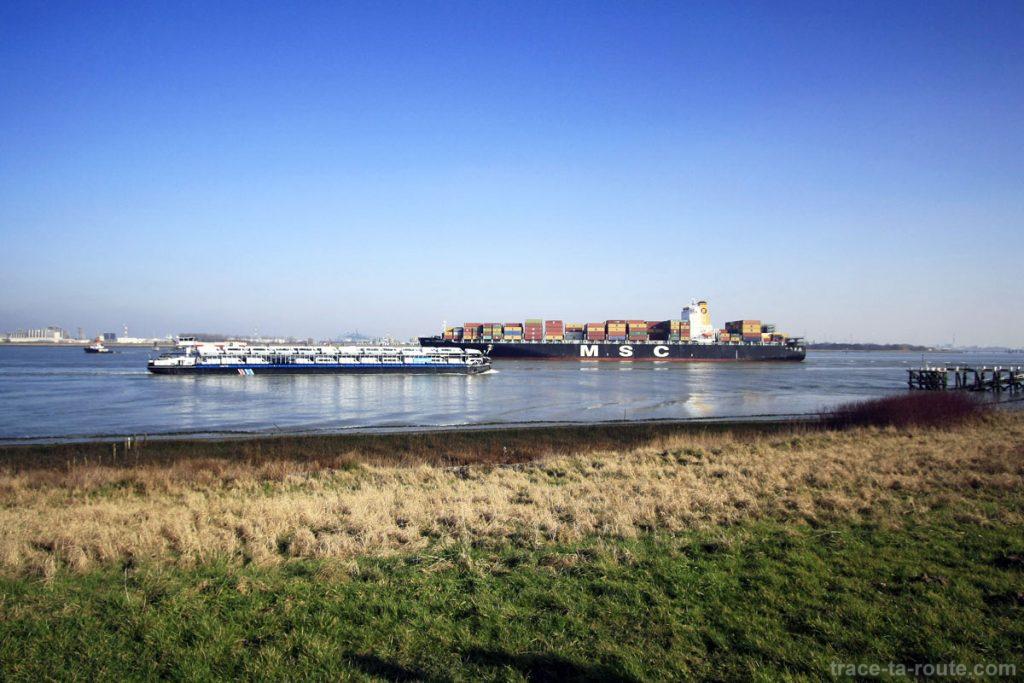 Bateaux de transport dans la zone portuaire de Doel