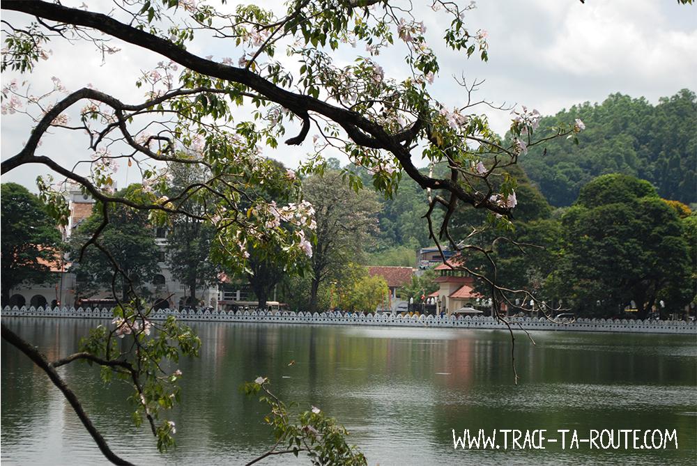 Le lac bucolique de Kandy, Sri Lanka