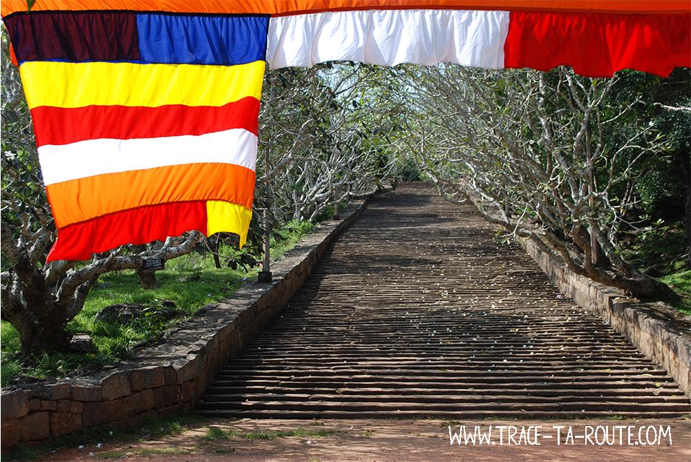 Marches de Mihintale, Sri lanka
