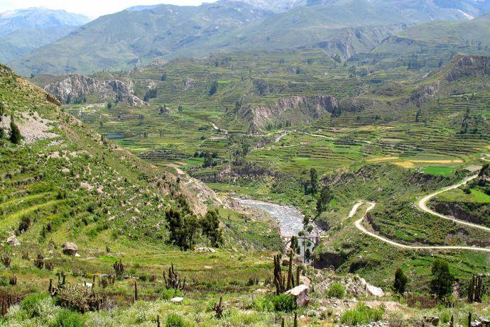 Incontournables au Pérou, le canyon de colca