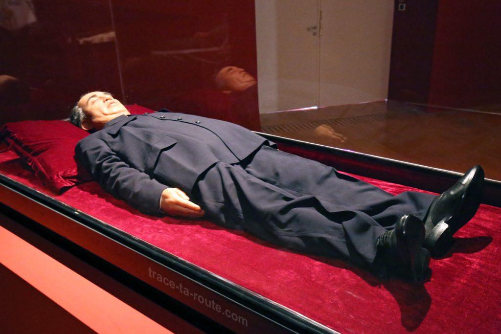 """Summit (Kim Il-Sung)"" (2010) Shen SHAOMIN - Exposition OPEN SEA au MAC Lyon"