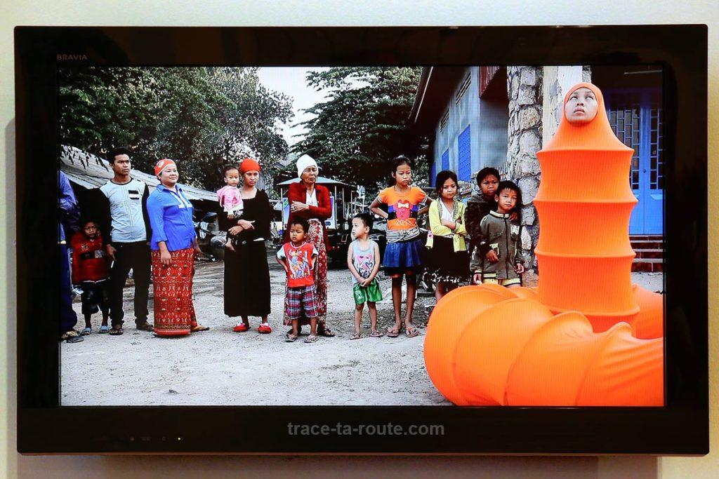 """The Buddhist Bug"" (depuis 2011) Anida YOEU ALI - Exposition OPEN SEA au MAC Lyon"