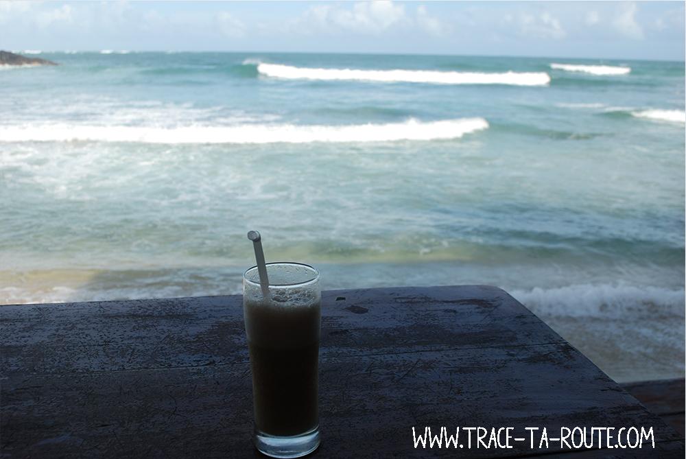Activité principale à Mirissa, vacances au Sri Lanka