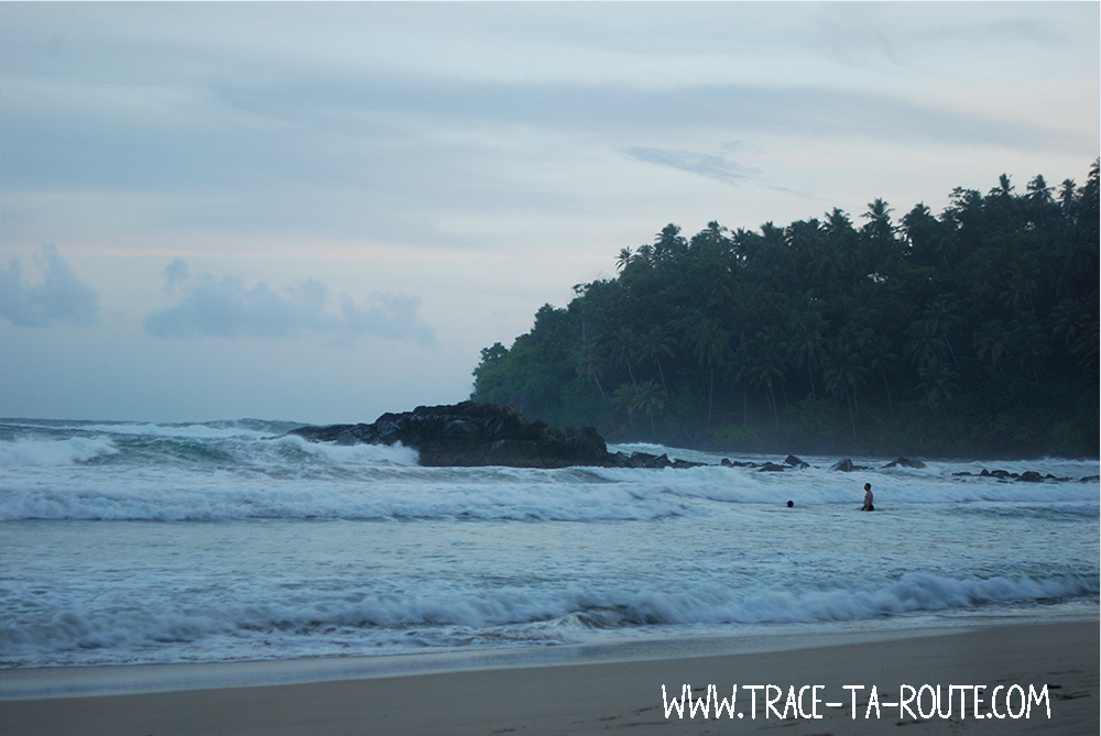 Baignade et surf à Mirissa, Sri Lanka