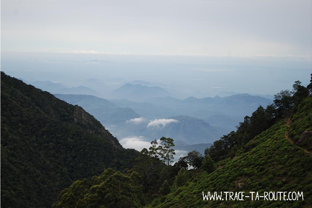 Montagnes à Ohiya, Sri Lanka