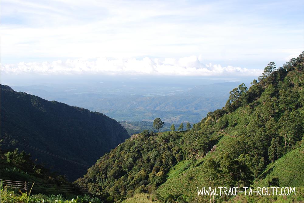 Randonnée matinale à Ohiya, Sri Lanka