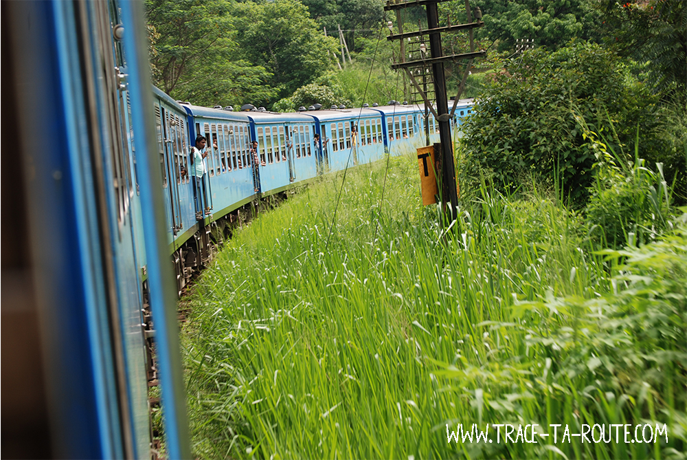 Train de Kandy à Ohiya, Sri Lanka