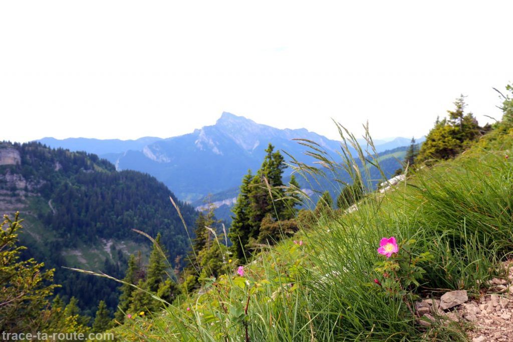 Le Grand Som et la Chartreuse depuis un sentier de la Dent de Crolles