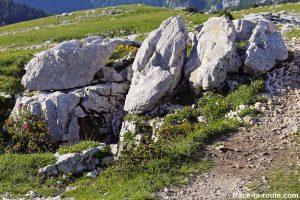 Terrier de marmottes sur le Plateau de la Dent de Crolles
