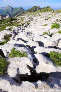 Lapiaz sur le Plateau de la Dent de Crolles