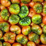 Cagette de tomates à Mercabarna, marché de Barcelone