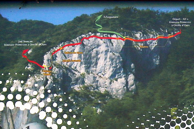Itinéraire Primevère à Oreille d'Ours Via ferrata Dent du Chat Roc du Cornillon