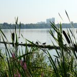 Lac Alster Hambourg