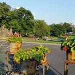 Planten und Blumen Hambourg - blog Trace ta route