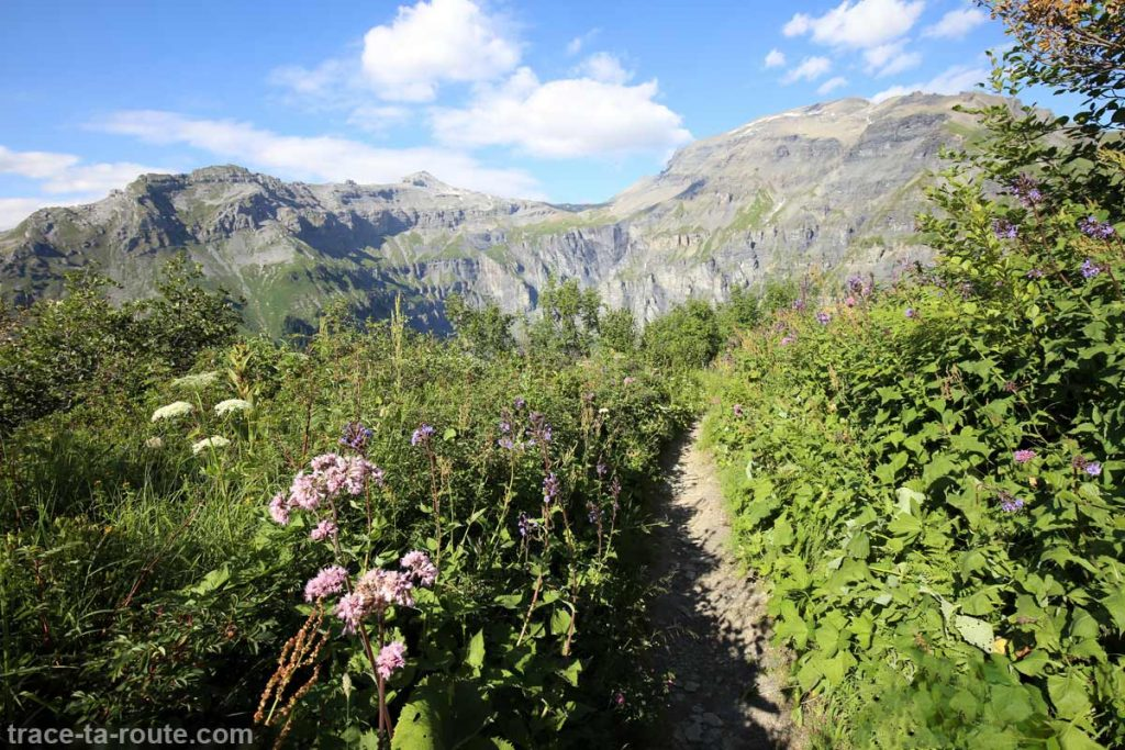 Le Buet vu dans la descente au Cirque des Fonts depuis le Petit Col d'Anterne