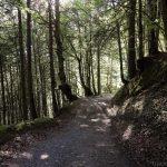 Chemin Les Frassettes sous les Chalets des Fonts
