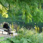 planten und blumen Hambourg - blog voyages