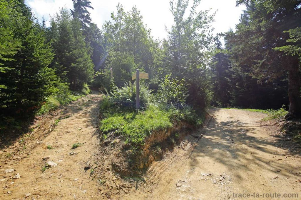 Sentiers de randonnée au Parmelan - Bois Brulé, Villaz