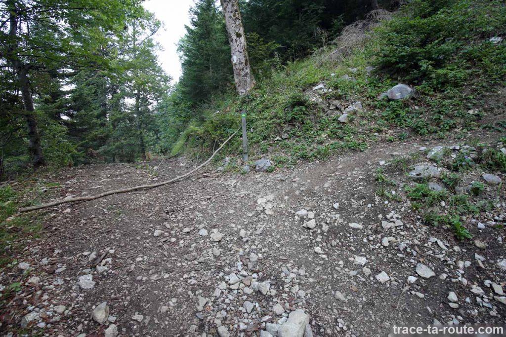 Sentier des vaches - Randonnée Parmelan - Bois Brulé, Villaz