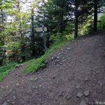 Sentier de randonnée au Parmelan - Bois Brulé, Villaz