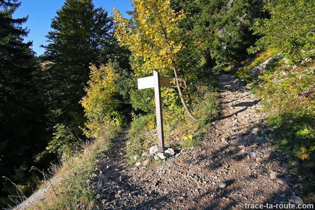 Sentier de randonnée vers Les Taillées du Sautets - Parmelan, Aviernoz