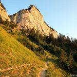 Le Grand Montoir Parmelan