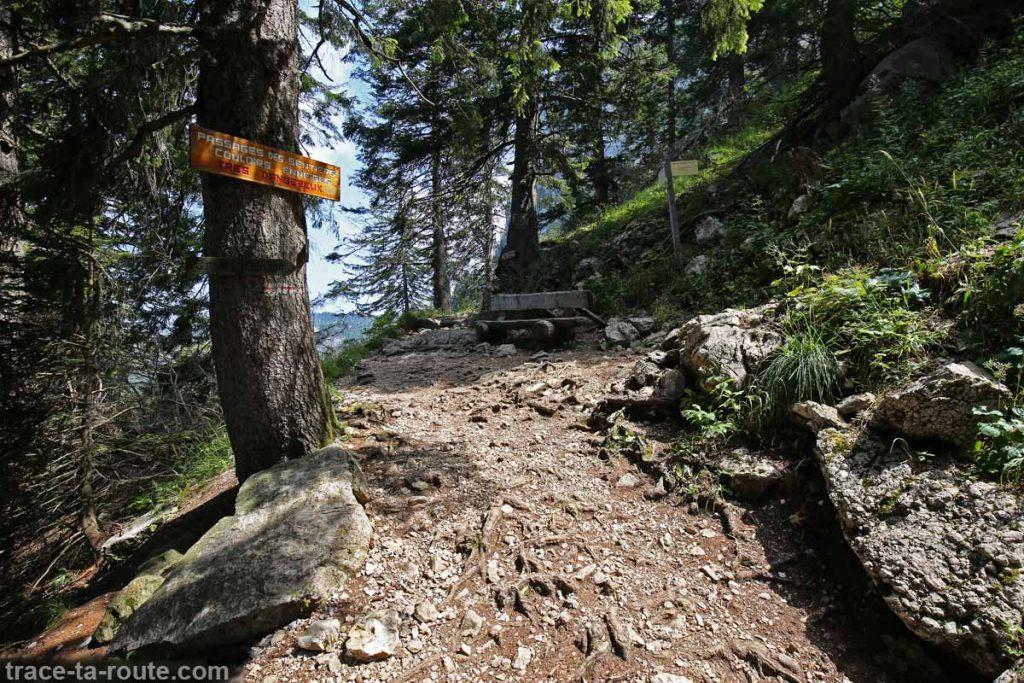Crêt du Chatillon - randonnée au Parmelan par le Grand Montoir, depuis le Bois Brulé, Villaz