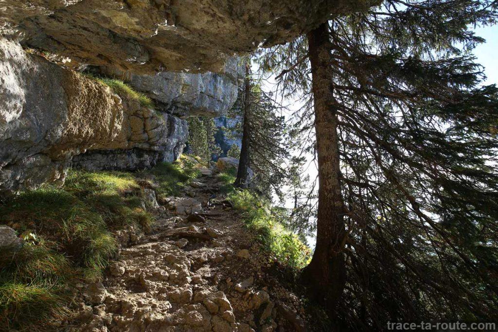 Sentier Le Grand Montoir - Parmelan randonnée