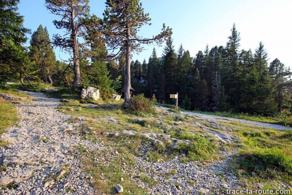 Sentier sortie randonnée Le Petit Montoir Parmelan