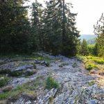 Sentier Le Petit Montoir Randonnée Parmelan