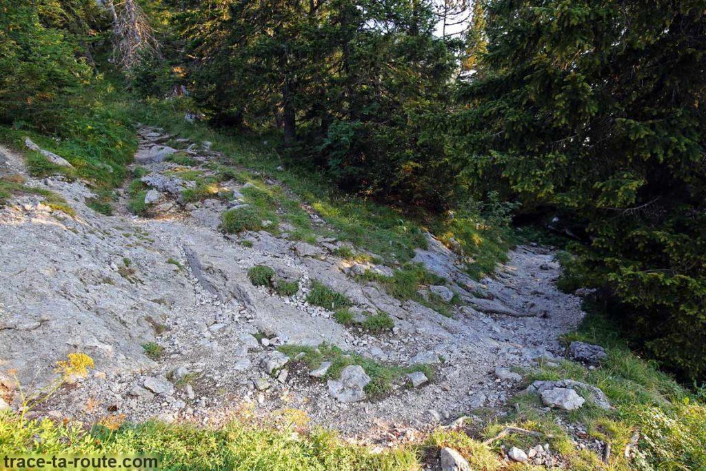 Sentier Le Petit Montoir Parmelan Randonnée