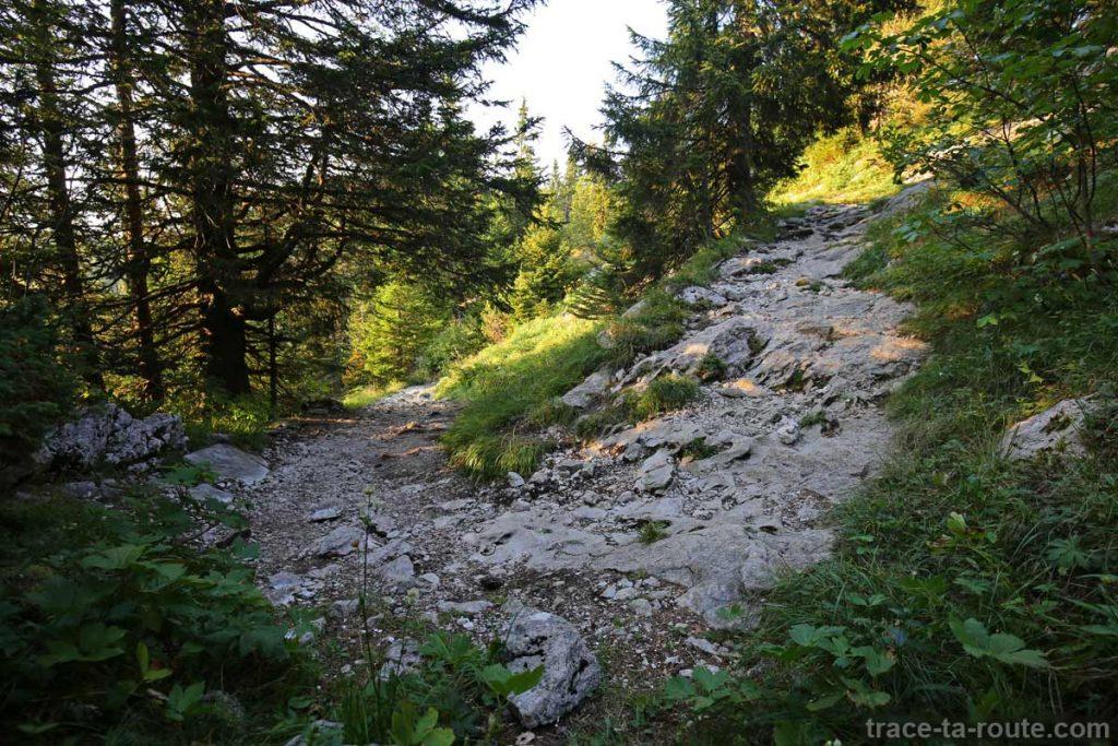 Sentier randonnée Le Petit Montoir Parmelan