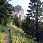 Sentier randonnée Parmelan Le Petit Montoir
