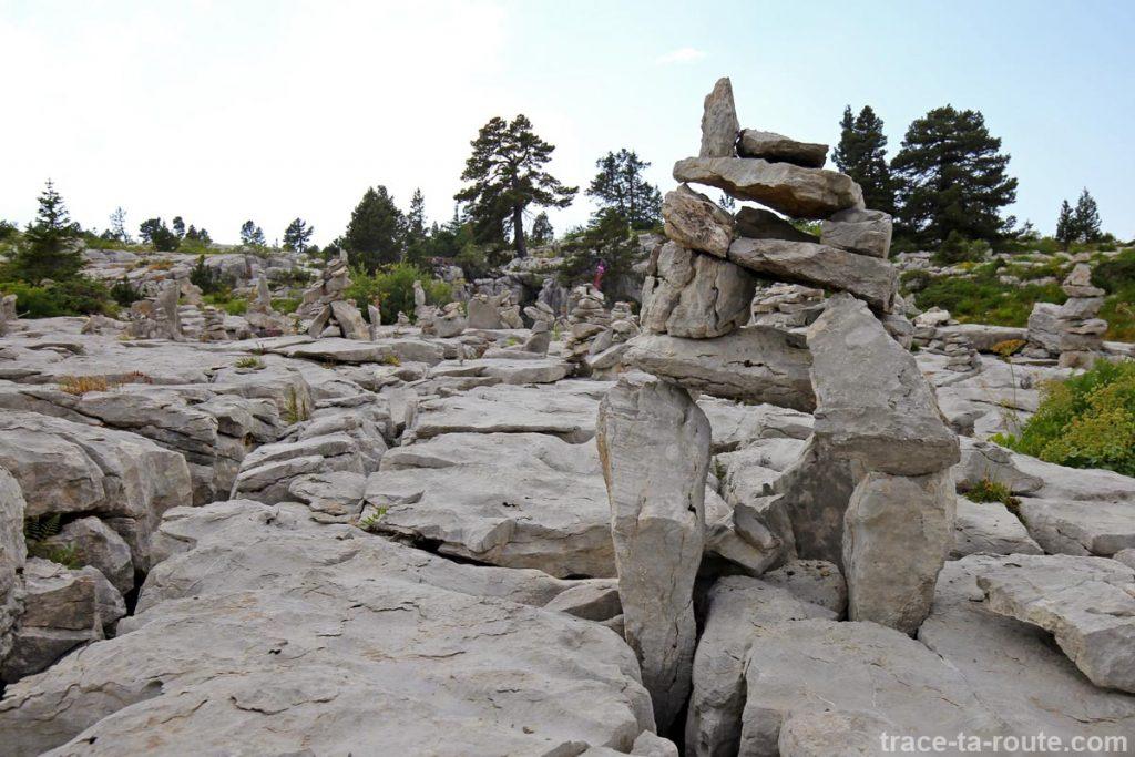 Sculptures de pierres sur le Plateau du Parmelan
