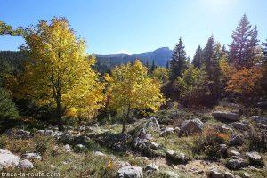 Sentier de randonnée au Parmelan au Crêt des Outalays depuis le Chalet de l'Anglettaz - Aviernoz