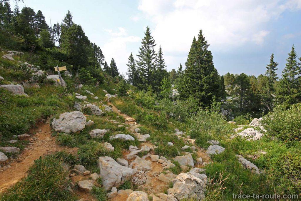 Sentiers de randonnée vers la Grotte de l'EnferSentiers de randonnée vers la Grotte de l'Enfer - Parmelan