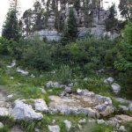 La Fontaine du Tour au bord du sentier de randonnée du plateau du Parmelan