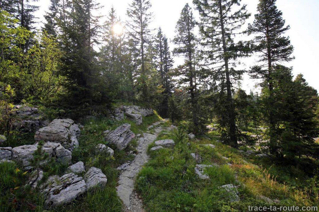 Sentier de randonnée du Plateau du Parmelan