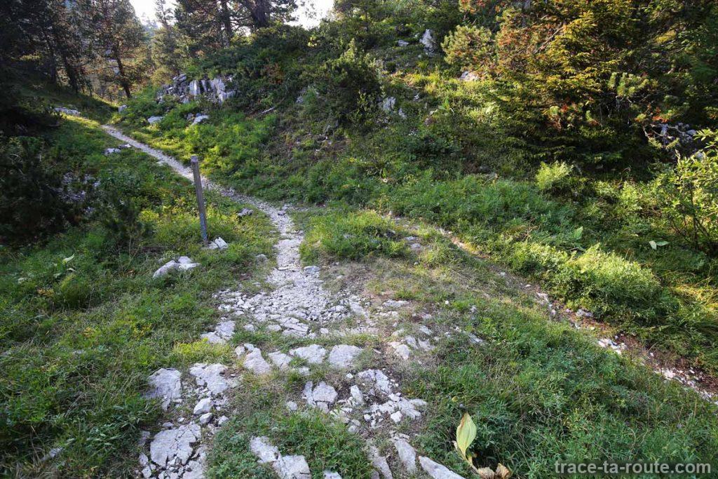 Croisement des sentiers de randonnée vers La Grande Glacière du Parmelan et vers le Chalet de l'Anglettaz